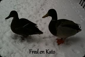 Fred en Kato