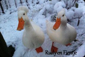 Rudy en Fientje